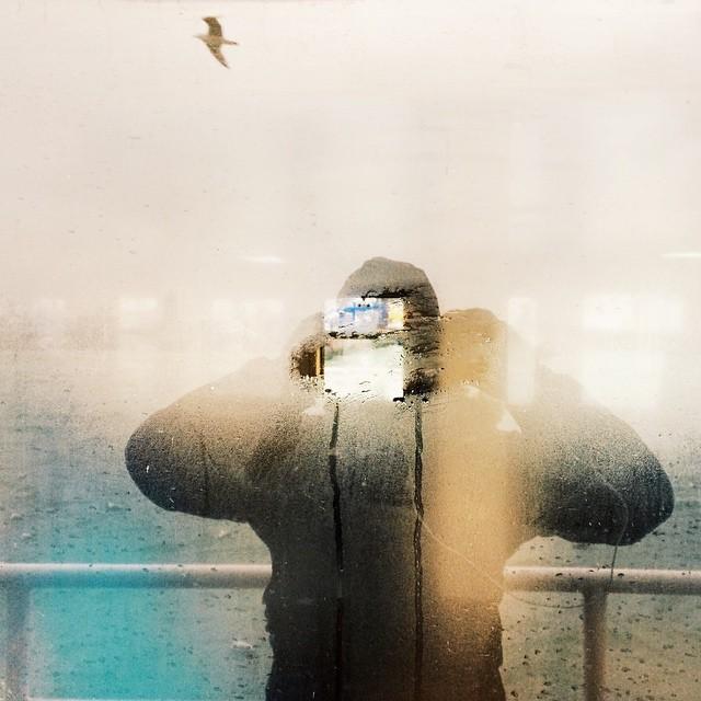 Me, myself and the seagull - Istanbul - Elif Suyabatmaz