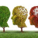 Alzheimera karşı 8 öğüt / Tuba KILINÇ*